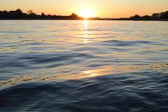 Vater Rhein (simon.stoelben) Tags: rhein rhine fluss river köln cologne natur nature water floatingwater rodenkirchen riverside sun sunrise sonnenaufgang summer sommer september morning earlybird