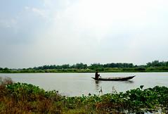 Paddling up the river (sanat_das) Tags: paddlinguptheriver landscape boat fisherman 28300mm d800 nature man bengal riverjalangi ghurni krishnanagar