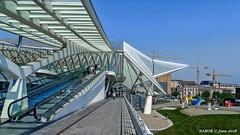 Liège. Belgium: Liège-Guillemins railway station (nabobswims) Tags: belgianrailways belgium hdr highdynamicrange lightroom liège liègeguillemins nabob nabobswims photomatix sel18105g sncb santiagocalatrava sonya6000 station wallonie be