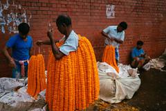 Flower Market, Kolkata (A. adnan) Tags: kolkatacc kolkata travel flower market marigold garland