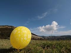Age of the reason... (modestino68) Tags: palla ball prato grass cielo sky nuvole clouds 18