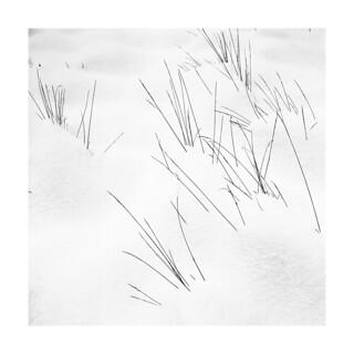 Winter_graphics_2
