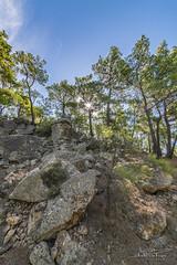 Lesvos rough nature. (PvRFotografie) Tags: greece griekenland lesbos lesvos nature natuur bos bomen boom tree trees forest rocks rotsen landscape landschap sonyilca99m2 1224mm sigma1224mm sigma12244556 sigma1224mmf4556dgiihsm wideangle groothoek