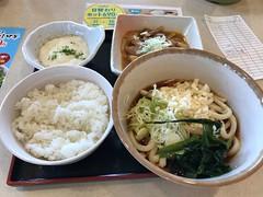モツ煮込みとうどんで昼食してます。 (96neko) Tags: snapdish iphone 7 food recipe 山田うどん食堂平塚大神店