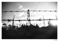 Forbidden zone (Aljaž Anžič Tuna) Tags: forbidden electricity electric power plant powerplant silhouette siluett we p photo365 project365 onephotoaday onceaday 365 35mm 365challenge 365project nikond800 nikkor nice naturallight nikon f28 nikkor1735mm 1735mm 1735mmf28 d800 dailyphoto day dof b bw blackandwhite black white blackwhite beautiful barbed wire barbedwire
