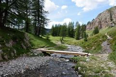 Le petit pont de bois (phiji75) Tags: été paysages montagne alpes parcs mercantour verdure tokina allos