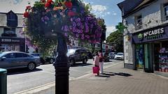 Malahide corner (Raúl Alejandro Rodríguez) Tags: flores flowers calle street esquina corner árboles trees comercios shops carteles letreros autos cars tráfico traffic malahide irlanda ireland