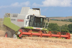 Claas Lexion 580 Combine Harvester cutting Winter Barley (Shane Casey CK25) Tags: claas lexion 580 combine harvester cutting winter barley kinsale grain harvest grain2018 grain18 harvest2018 harvest18 corn2018 corn crop tillage crops cereal cereals golden straw dust chaff county cork ireland irish farm farmer farming agri agriculture contractor field ground soil earth work working horse power horsepower hp pull pulling cut knife blade blades machine machinery collect collecting mähdrescher cosechadora moissonneusebatteuse kombajny zbożowe kombajn maaidorser mietitrebbia nikon d7200