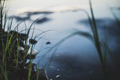 Midsummer18-21 (junestarrr) Tags: summer finland lapland lappi visitlapland visitfinland finnishsummer midsummer yötönyö nightlessnight kemijoki river