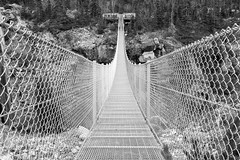 Yukon Suspension Bridge. (womboyne7) Tags: fenced friday suspension fence wire bridge alaska sundaylights