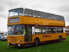Newcastle Busways 111 (EJR111W) - 27-08-18 (peter_b2008) Tags: newcastlebusways tyneandwear pte twpte leyland atlantean alexander ejr111w preserved nebpt seaburn busrally buses coaches transport buspictures