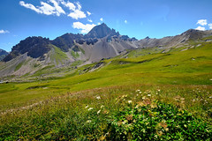 alpi (lotti roberto) Tags: alpi alpine grass sky clouds mountain mountains