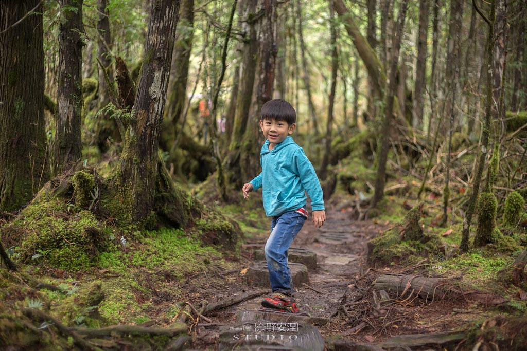 太平山翠峰湖環山步道 |走在泥濘的道路上,只為途中美景 | 宜蘭大同鄉46