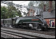 No. 60009 (Lewis_Hurley) Tags: railtour charter westcoastmainline wcml england uk warwickshire atherstone locomotive steamengine steam londonnortheasternrailway lner britishrailways unionofsouthafrica a4 60009