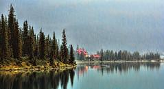 Easy Morning (Miradortigre) Tags: canada rocky alberta lago lake bow landscape paisaje water sky cielo agua wood