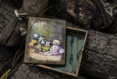 flower fairy box (Olga K.131313) Tags: box chamomile spray decoupage blue green paint handmade fairy flower