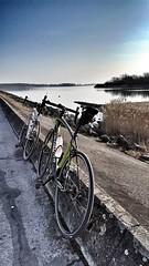 Specialized's Roubaix Experience 2018 (jonathan.kraus30) Tags: iamspecialized specialized shimano specializedroubaix nature lake derlake lacduder lac landscape garmin fulcrumwheels veloder dike roadbike road roubaixexperience france northeastoffrance specializedallez