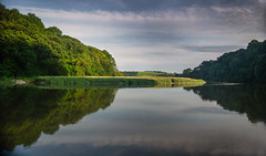 Symmetry (suerowlands2013) Tags: rivertamar devon cornwall symmetry reflections summer evening stillwater calm peace tranquility river clouds hightide trees rushes cotehele nationaltrust