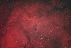 The Elephant's Trunk Nebula in Duo-Narrowband (Sky-Watcher Esprit 100ED) (blacktoothcreative) Tags: astrophotography reddit ifttt