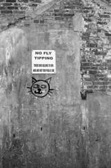 Fly Tipping (DanRSmith) Tags: leicam4 voigtlander35mmf25 bw blackandwhite ilfordid11 contrast eastmanxx