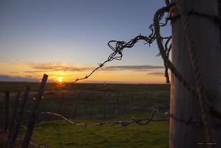 Sundown On The Range