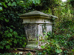 Plenty of Headroom (Steve Taylor (Photography)) Tags: architecture green uk england london weeds leaves ivy autumn grave tomb nunhead cemetry overgrown