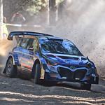 Hayden Paddon - Hyundai i20 AP4++ thumbnail