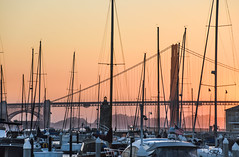 sunset over st. francis yacht club (pbo31) Tags: sanfrancisco california nikon d810 color city urban august 2018 summer boury pbo31 goldengatebridge bridge 101 sunset marina district orange silhouette sail stfrancis boat america flag