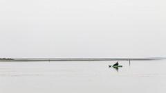 Unidos por la costa - Bahía Blanca (david m busto) Tags: costa baha ambiental ambientalismo speedway motocross municipalidad conflicto aves migracin migratoria universidadnacionaldelsur hectorgay cambiemos medioambiente bahíablanca balneario maldonado environmental playero rojizo playerorojizo bahía migración