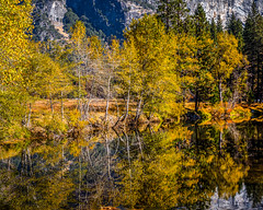 Yosemite Valley Fall Color (Jeffrey Sullivan) Tags: fall colors trees colorful merced river yosemite nationalpark photography workshop landscape travel california usa nature canon eos 6d photo copyright november 2017 jeff sullivan unitedstates sierranevada national park united states