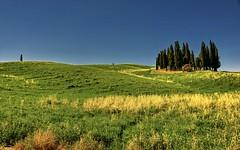 Cipressi (giannipiras555) Tags: landscape panorama natura cipressi toscana colori