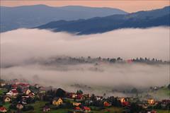 at dawn (witoldp) Tags: beskidy beskid śląski koniaków poland landscape foggy