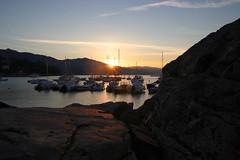 Sunrise at Santa Margherita Ligure (GE) (Francesco Dini) Tags: sunrise alba sole mare sea seasand water portofino santa margherita ligure liguria genova bay baia spiaggia seaside