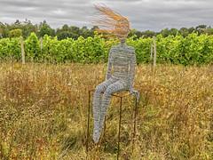 wire-frame_1290843 (jswildlife) Tags: jswildlife lumixfz1000 sculpture public publicsculpture vineyard abingdon oxfordshire uk