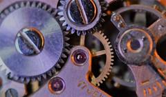Mechanical  - 89 (Marguerite-Helene) Tags: macromondays watch mechanical roue dune mécaniquedunemontre cogwheel