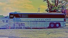 Lakeland Bus Lines, Dover, New Jersey (6 of 6) (gg1electrice60) Tags: lakelandbuscompany lakelandbuslinesinc bus terminal garage 425eastblackwellstreet 425eblackwellstreet 425eastblackwellst 425eblackwellst morriscounty newjersey nj unitedstates usa us america chainlinkfence cyclonefence fence busstation busterminal busparkinglot street pavement ashphalt nearnewjerseytransitrailline vehicle rockaway rockawaytownship directservicetonewyorkcity directservicetonyc tarmac parkinglot telephonepole trees shrubs motorcoachindustriesbus motorcoachindustries mci mcibus manufacturedbynewflyerindustries newflyerindustries builtincanada motorcoach motorcoachindustriesmc9 mc9jerseycruiser jerseycruisers number180 no180 180 lakeland buses gravel minoltaslrfilmcamera