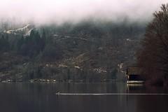 0817 The Fog Is Gone II (Hrvoje Simich - gaZZda) Tags: outdoors noperson fog mist reflection pond building duck animal bird travel bohinj slovenia europe nikon nikond750 sigma150500563 gazzda hrvojesimich