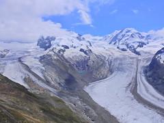 Gornergletscher (Mono Andes) Tags: suiza schweiz europa alpes alps valais zermatt monterosa glaciar glacier grornergrat dufourspitze liskamm gornergletscher grenzgletscher