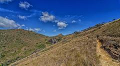 Trilha de subida (mcvmjr1971) Tags: vermelho parque estadual da serra do papagaio baependi minas gerais brasil pouso mãe douro trilha para o pico chorão nikon d7000 mmoraes viagem rural 2018