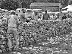 The Wallers (@WineAlchemy1) Tags: yorkshiredales nationalpark drystonewall competition participants kilnseyshow limestone tradition buildthatwall blackwhite monochrome neroebianco noiretblanc wharfedale craft skill oldways interlocking dswa