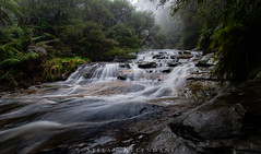 Leaura Cascades - Blue Mountains, NSW, Australia (StefanKleynhans) Tags: waterfall longexposure nikond800e nikon1635f4 nsw mountains bluemountains australia nature hike hiking rain water green plants