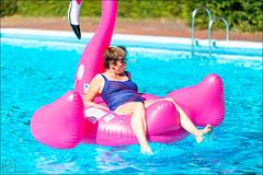 IJsberen Ontbijt (Yannig Van de Wouwer) Tags: 2018 boom boompark ijsberen kzcy kzcyboom megaijsberenontbijt breakfast brunch ontbijt swim swimming swimmingpool zwembad zwemclub zwemmen vlaanderen belgium be
