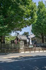 Tokyo - Ueno (Francesco Fiorucci) Tags: sony e a6000 sonnarte1824 carlzeiss japan travel tokyo ueno