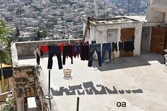 DSC_0100 (oferamit) Tags: hank shadows jerusalem livingstyle