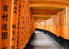 Fushimi Inari Kyoto (jacksonb97) Tags: fushimi inari kyoto japan sony zeiss 21mm loxia morning empty temple history
