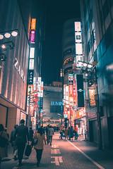 Shinjuku - Tokyo, Japan (inefekt69) Tags: japan tokyo shinjuku nishishinjuku nikon d5500 日本 東京 新宿 西新宿 night neon street