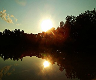 The Pond golden hour photo 2