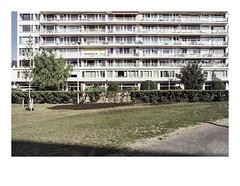 161015_a_00017_OM2n-fuji-superia_antwerpen_nieuw-zuid 13/13 (A Is To B As B Is To C) Tags: aistobasbistoc b belgië belgium antwerpen antwerp nieuwzuid olympus om2n analog film fuji fujifilm fujicolor fujifilmsuperia color social housing tower towerblock architecture urban urbanrenewal city citylife balcony canopy red yellow