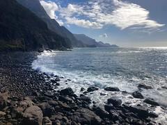 Cola de dragón (Be a Tree) Tags: playa beach canarias guayedra sealandscape landscape grancanaria islascanarias