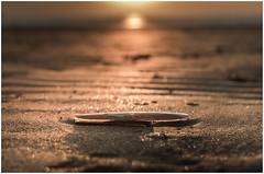 Down (garethleethomas) Tags: beach sand sunset colour nature coast seaside wales uk greatbritain